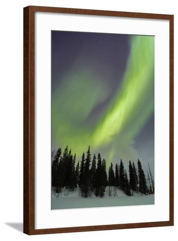 Northern Lights in Winter, Aurora Borealis, PyhŠ-Luosto National Park, Luosto, Lapland, Finland-P. Kaczynski-Framed Art Print
