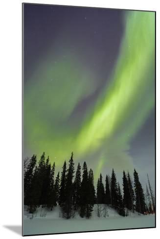 Northern Lights in Winter, Aurora Borealis, PyhŠ-Luosto National Park, Luosto, Lapland, Finland-P. Kaczynski-Mounted Photographic Print