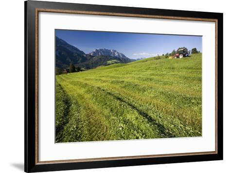 Austria, Styria, Grimming, Ennstal, Mountain-Region, Agriculture, Field Work-Rainer Mirau-Framed Art Print