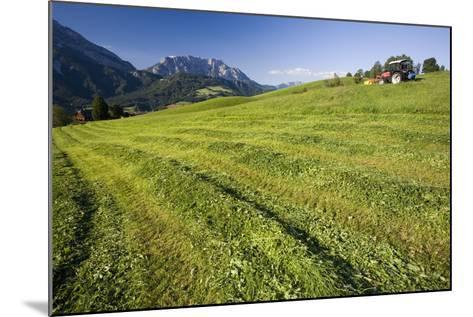 Austria, Styria, Grimming, Ennstal, Mountain-Region, Agriculture, Field Work-Rainer Mirau-Mounted Photographic Print