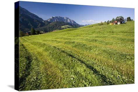 Austria, Styria, Grimming, Ennstal, Mountain-Region, Agriculture, Field Work-Rainer Mirau-Stretched Canvas Print