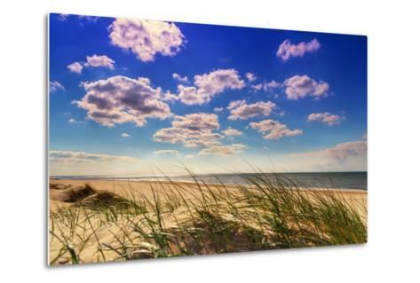Netherlands, Holland, on the West Frisian Island of Texel, Province of North Holland-Beate Margraf-Metal Print
