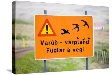 Iceland, Road Sign, Warning 'Low-Flying Birds'-Frank Lukasseck-Stretched Canvas Print