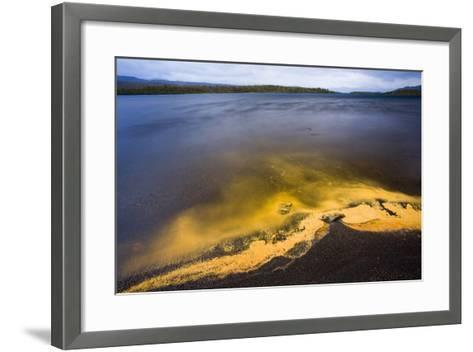 Sweden, Lapland, Lake, Shore, Birch-Pollen, Landscape, Autumn-Rainer Mirau-Framed Art Print