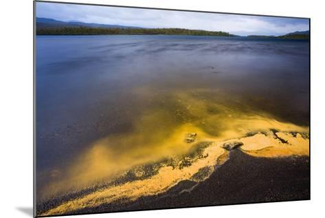 Sweden, Lapland, Lake, Shore, Birch-Pollen, Landscape, Autumn-Rainer Mirau-Mounted Photographic Print