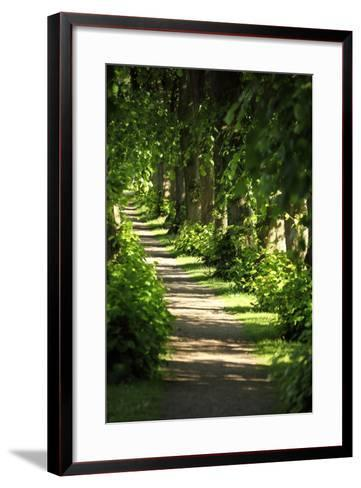 Schleswig-Holstein, Sieseby, Path Through Old Cemetery-Catharina Lux-Framed Art Print