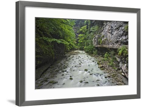 Austria, Vorarlberg, Dornbirn (Village), Rappenlochschlucht (Ravine) (Gulch)-Rainer Mirau-Framed Art Print