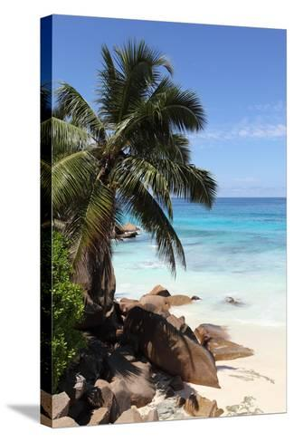 The Seychelles, La Digue, Beach, Rocks, Palm, Anse Patates-Catharina Lux-Stretched Canvas Print