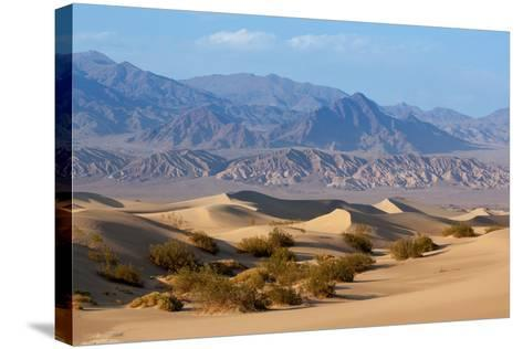 USA, Death Valley National Park, Mesquite Flat Sand Dunes-Catharina Lux-Stretched Canvas Print