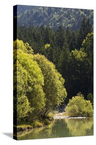 Germany, Bavaria, River Landscape, the Isar-Rainer Mirau-Stretched Canvas Print
