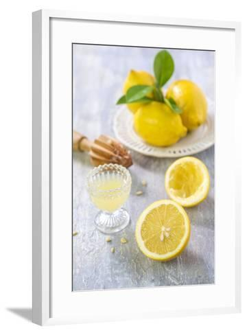 Lemons, Citrus-Press and Juice-Jana Ihle-Framed Art Print