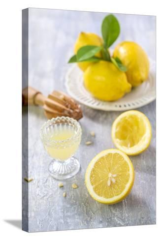 Lemons, Citrus-Press and Juice-Jana Ihle-Stretched Canvas Print