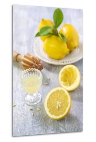 Lemons, Citrus-Press and Juice-Jana Ihle-Metal Print