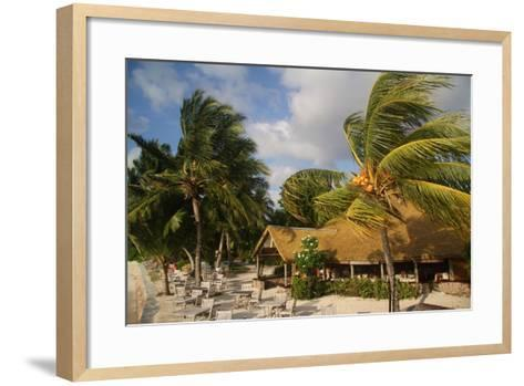 The Seychelles, La Digue, Beach Restaurant, Palms, Storm-Catharina Lux-Framed Art Print
