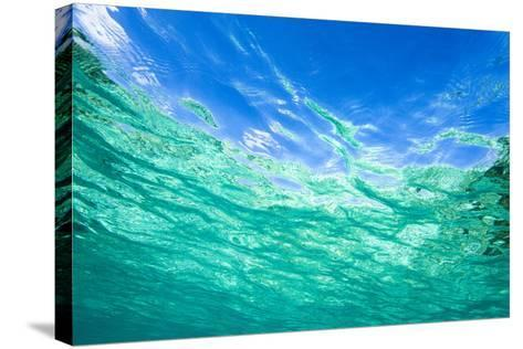 Sea, Water Surface, from Below-Frank Lukasseck-Stretched Canvas Print
