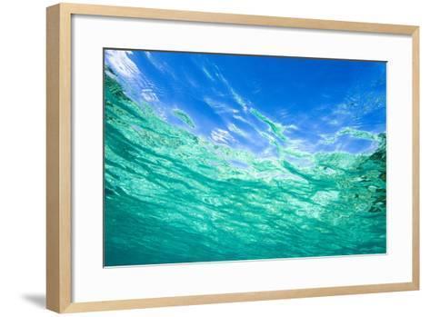 Sea, Water Surface, from Below-Frank Lukasseck-Framed Art Print