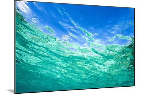 Sea, Water Surface, from Below-Frank Lukasseck-Mounted Photographic Print