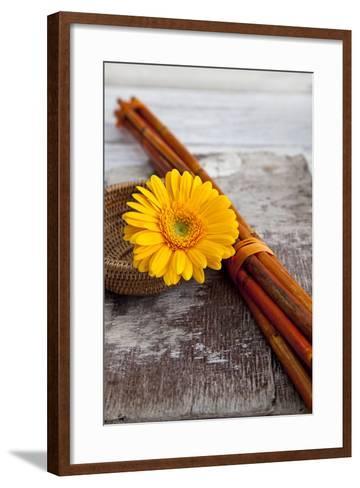 Gerbera, Flower, Still Life, Orange-Andrea Haase-Framed Art Print