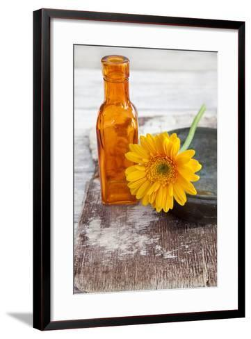 Gerbera, Flower, Orange, Glass Bottle-Andrea Haase-Framed Art Print