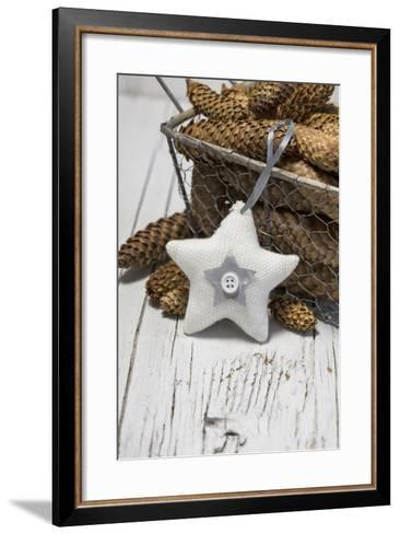 Poinsettia Made of Cord Material, Cone-Andrea Haase-Framed Art Print