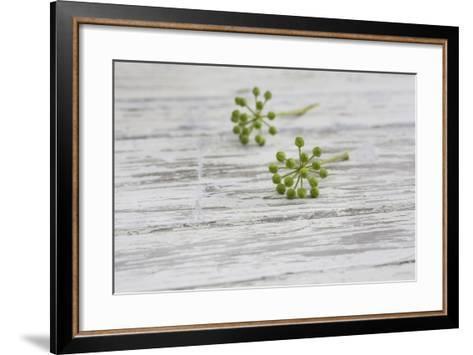 Still Life, EfeublŸten, Green, Wood, White-Andrea Haase-Framed Art Print