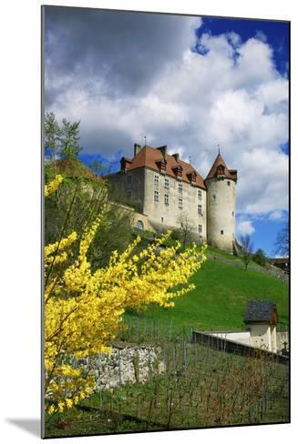 Switzerland, 'Chateau De Gruy?res' in the Swiss Canton Fribourg on a Sunny Spring Day-Uwe Steffens-Mounted Photographic Print