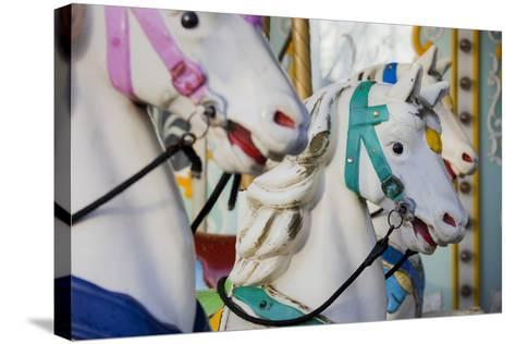 France, Paris, Jardin of the Tuileries, Roundabout, Horses, Detail-Rainer Mirau-Stretched Canvas Print