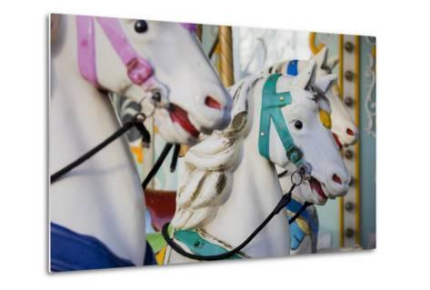France, Paris, Jardin of the Tuileries, Roundabout, Horses, Detail-Rainer Mirau-Metal Print
