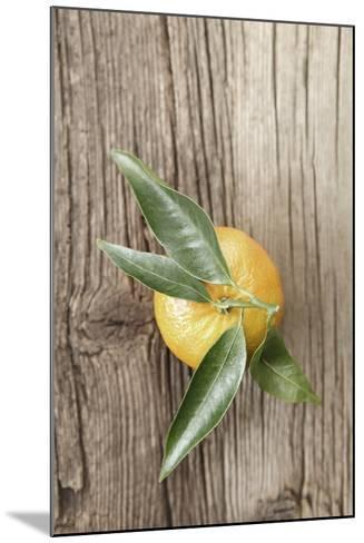 Clementine with Leaves on Wood-Nikky-Mounted Photographic Print