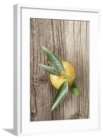 Clementine with Leaves on Wood-Nikky-Framed Art Print