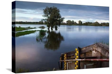 Germany, Brandenburg, Oder-Neisse Cycle Route, Water Level at the Oder-Catharina Lux-Stretched Canvas Print