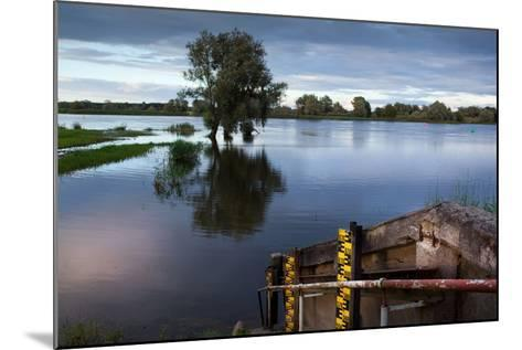 Germany, Brandenburg, Oder-Neisse Cycle Route, Water Level at the Oder-Catharina Lux-Mounted Photographic Print