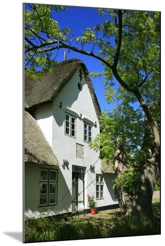 Thatched Captain's House under an Old Ash on the Corner 'Kastanienweg' (Street-Uwe Steffens-Mounted Photographic Print