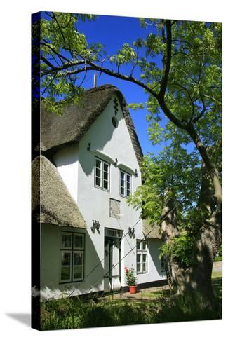Thatched Captain's House under an Old Ash on the Corner 'Kastanienweg' (Street-Uwe Steffens-Stretched Canvas Print