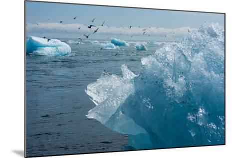Atlantic Coast with Iceberg Remains at the Jškulsarlon-Catharina Lux-Mounted Photographic Print