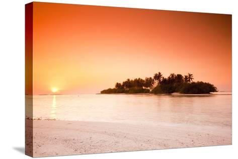 The Maldives, Sea, Palm Island, Sunrise-Frank Lukasseck-Stretched Canvas Print