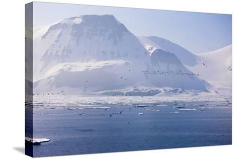 Norway, Storfjord, Winter Landscape-Frank Lukasseck-Stretched Canvas Print