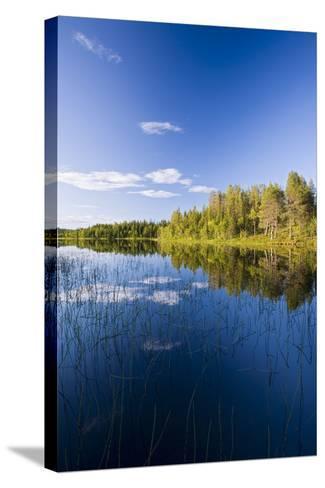 Sweden, Lapland, Lake, Shore, Landscape-Rainer Mirau-Stretched Canvas Print