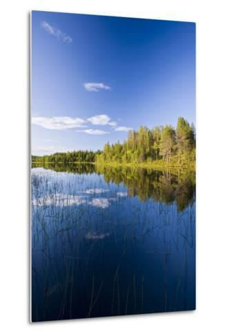 Sweden, Lapland, Lake, Shore, Landscape-Rainer Mirau-Metal Print