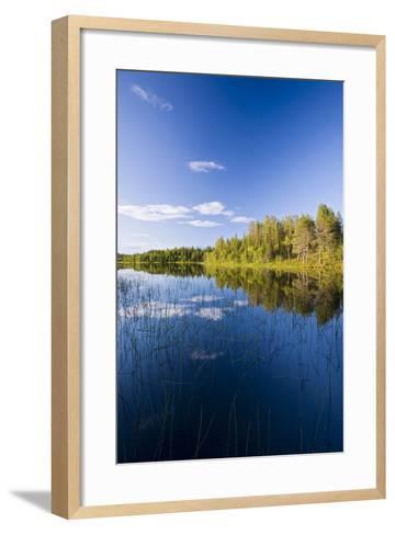Sweden, Lapland, Lake, Shore, Landscape-Rainer Mirau-Framed Art Print