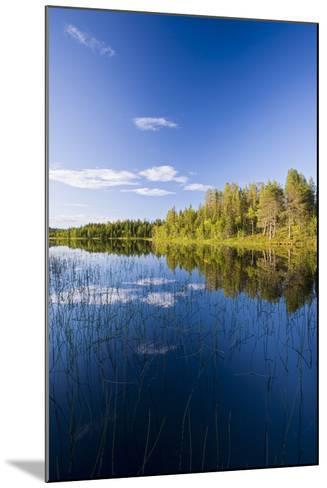 Sweden, Lapland, Lake, Shore, Landscape-Rainer Mirau-Mounted Photographic Print