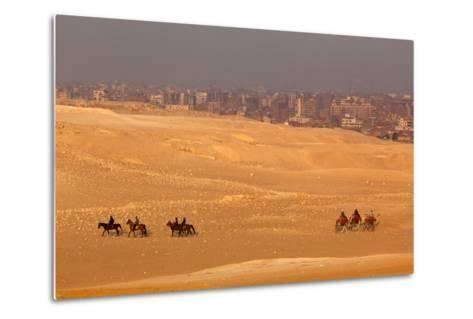 Egypt, Cairo, Giza, Evening Light, Camels and Horses-Catharina Lux-Metal Print