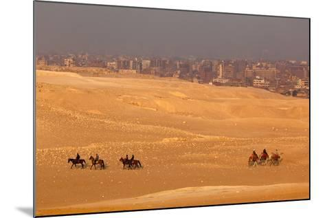 Egypt, Cairo, Giza, Evening Light, Camels and Horses-Catharina Lux-Mounted Photographic Print