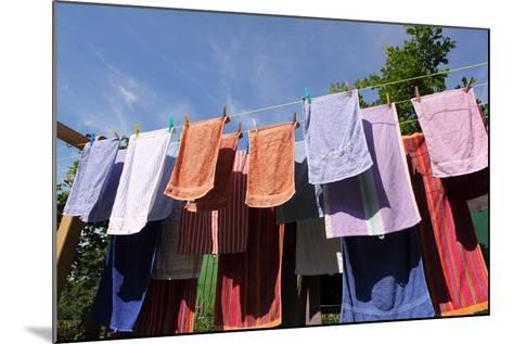 Farm, Clothesline, Towels-Catharina Lux-Mounted Photographic Print