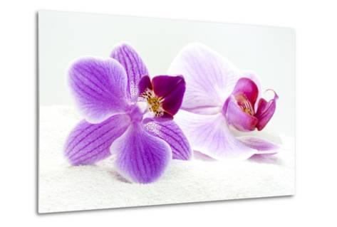 Orchid Blossoms on White Sand-Uwe Merkel-Metal Print