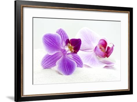 Orchid Blossoms on White Sand-Uwe Merkel-Framed Art Print