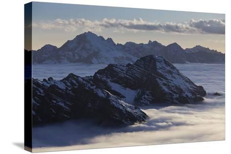 Italy, Lombardy, Stilfser Joch (Col) National Park, View of Monte Scorluzzo, Cresta Di Riding-Rainer Mirau-Stretched Canvas Print