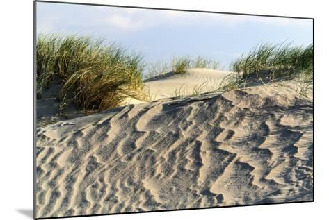 Lithuania, Curonian Spit, Perwalka, Drifting Sand Dune-Catharina Lux-Mounted Photographic Print