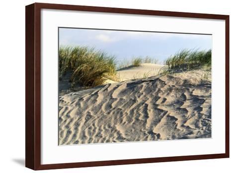 Lithuania, Curonian Spit, Perwalka, Drifting Sand Dune-Catharina Lux-Framed Art Print