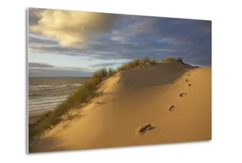 Costal Cliff at the 'Rotes Kliff' (Red Cliff) on the Island of Sylt in the Evening Light-Uwe Steffens-Metal Print